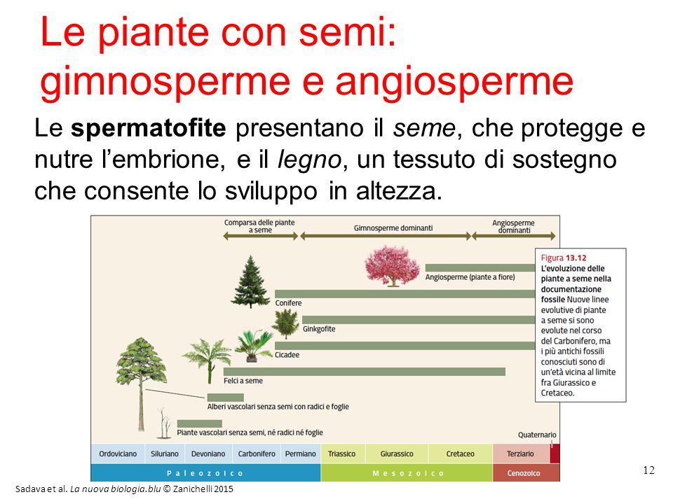 Le piante con semi: gimnosperme e angiosperme