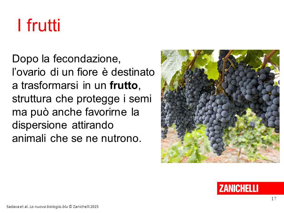 13/11/11 I frutti.