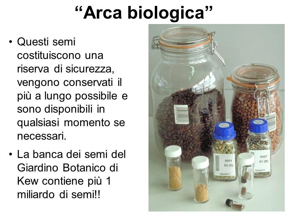 Arca biologica