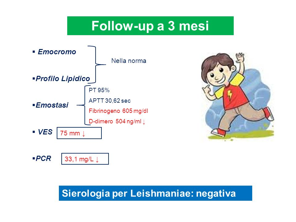 Follow-up a 3 mesi Sierologia per Leishmaniae: negativa Emocromo