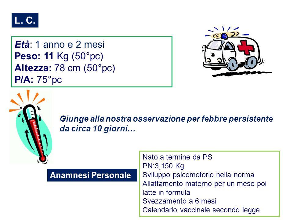 L. C. Età: 1 anno e 2 mesi Peso: 11 Kg (50°pc) Altezza: 78 cm (50°pc)