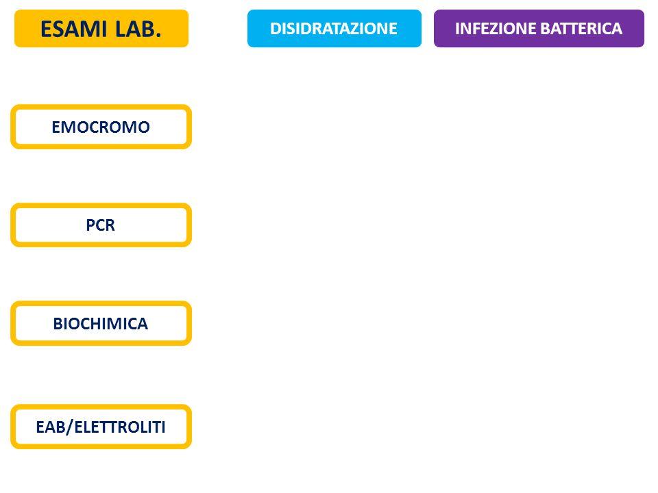 ESAMI LAB. DISIDRATAZIONE INFEZIONE BATTERICA EMOCROMO PCR BIOCHIMICA