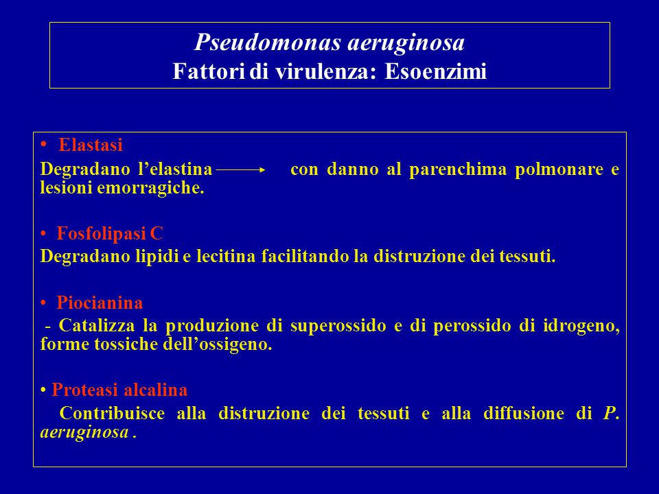 Pseudomonas aeruginosa Fattori di virulenza: Esoenzimi