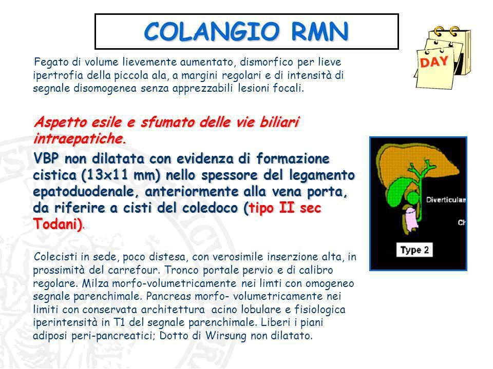 COLANGIO RMN DAY.