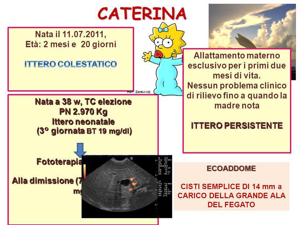 CATERINA Nata il 11.07.2011, Età: 2 mesi e 20 giorni
