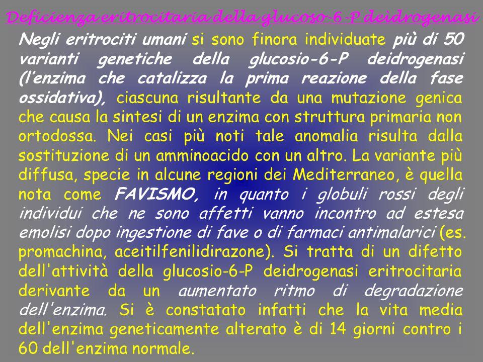 Deficienza eritrocitaria della glucoso-6-P deìdrogenasi