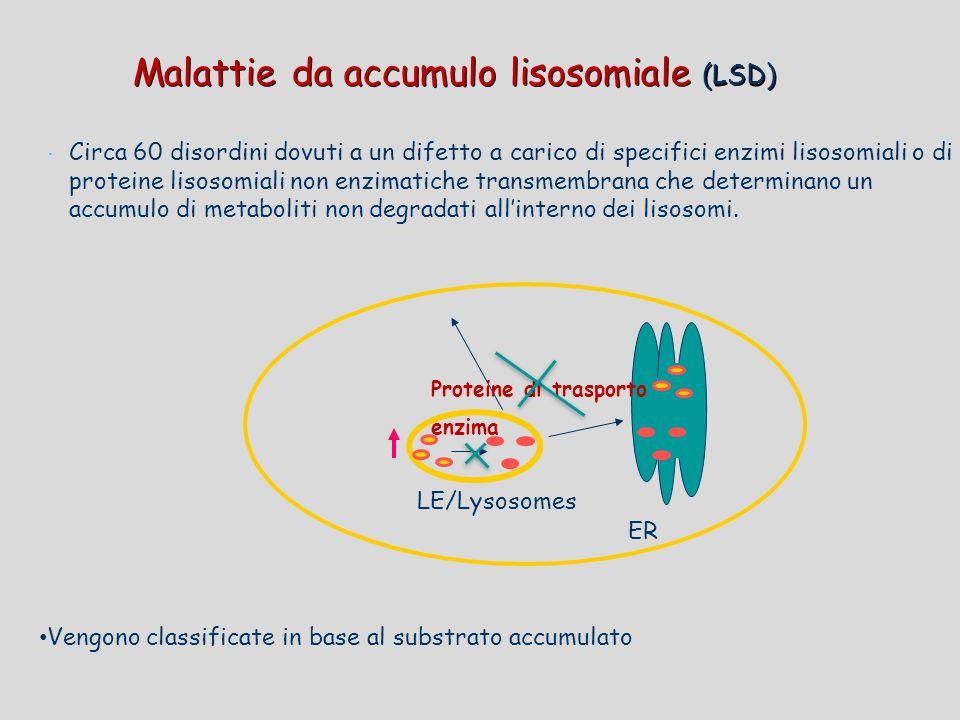 Malattie da accumulo lisosomiale