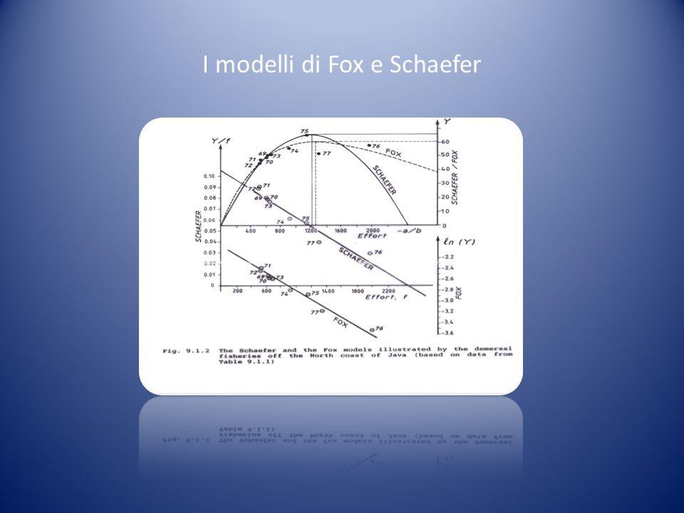 I modelli di Fox e Schaefer