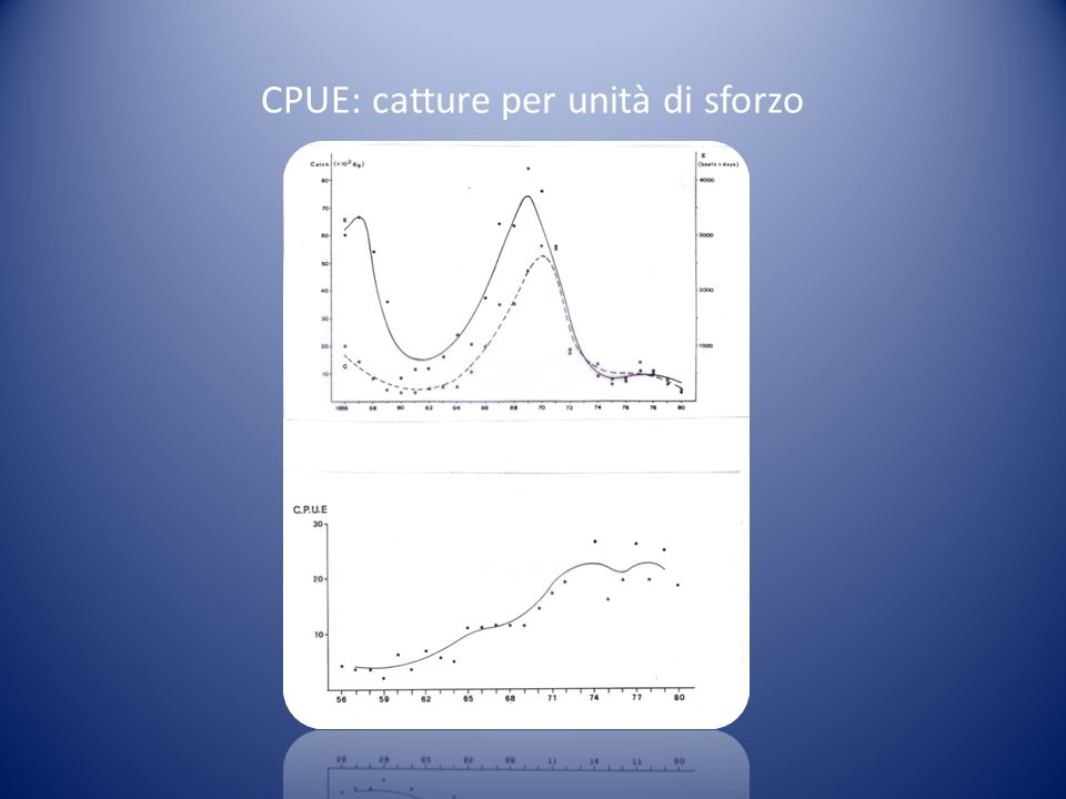CPUE: catture per unità di sforzo