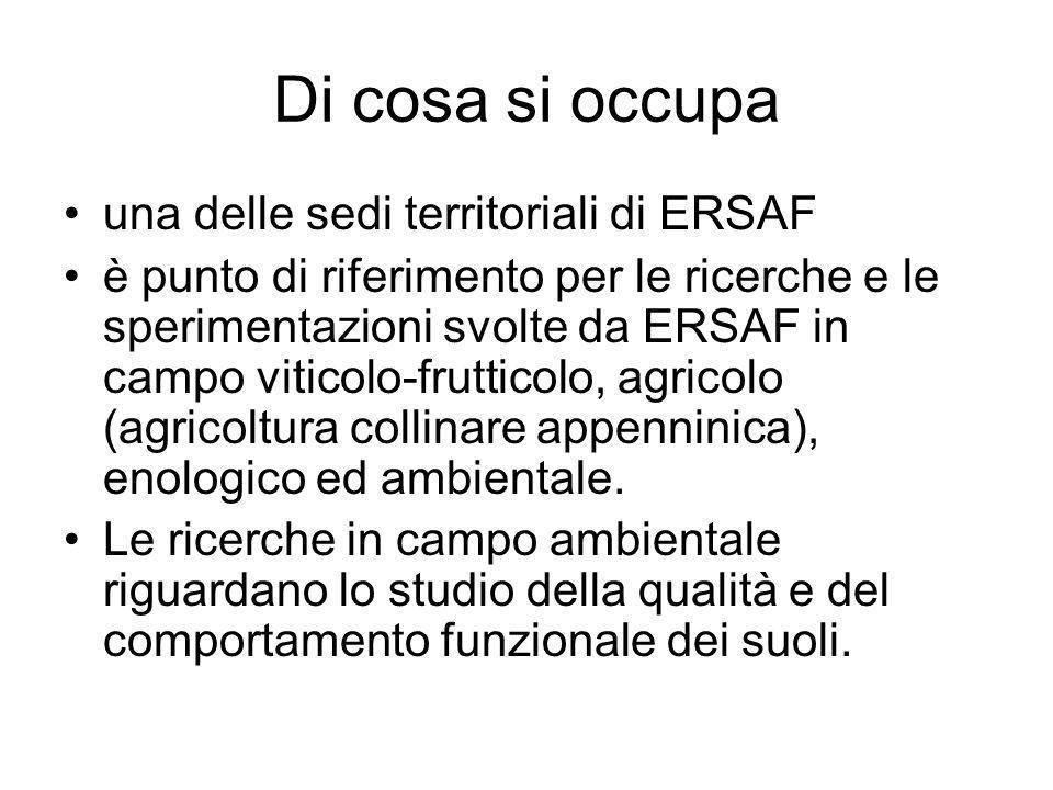 Di cosa si occupa una delle sedi territoriali di ERSAF