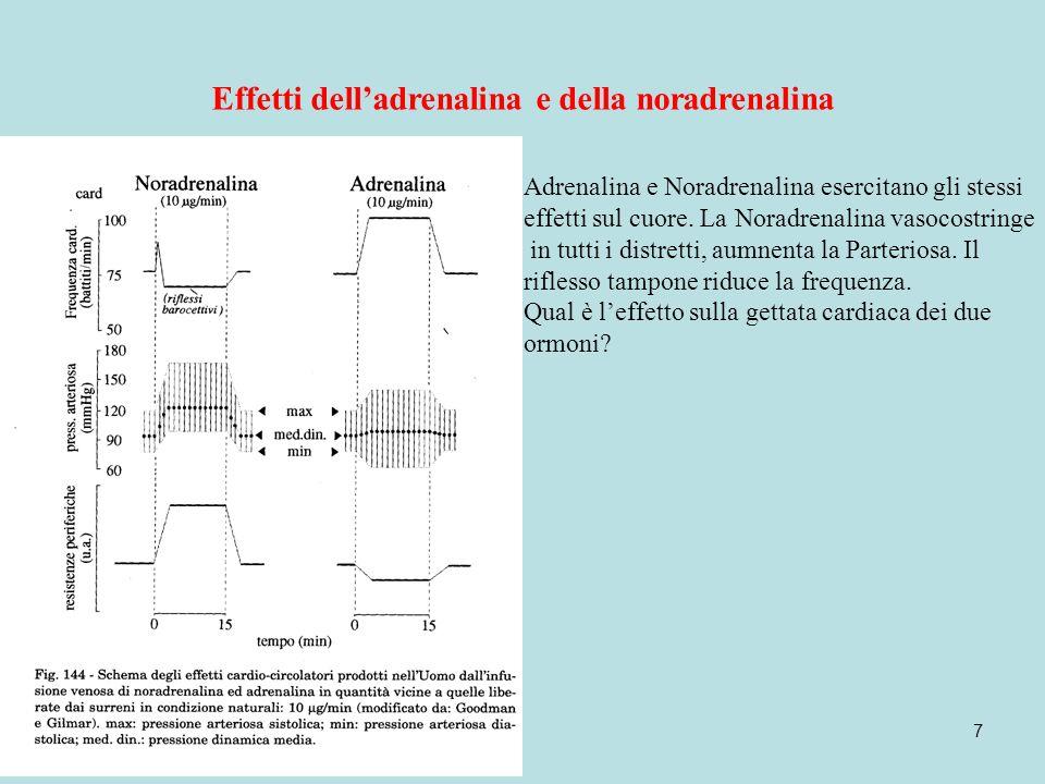 Effetti dell'adrenalina e della noradrenalina