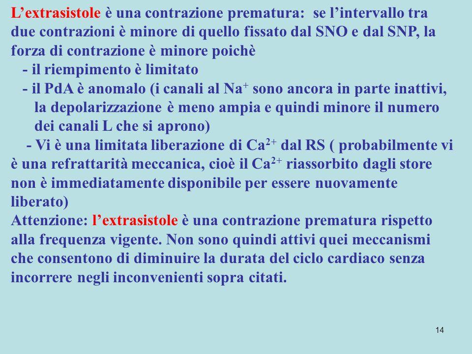 L'extrasistole è una contrazione prematura: se l'intervallo tra