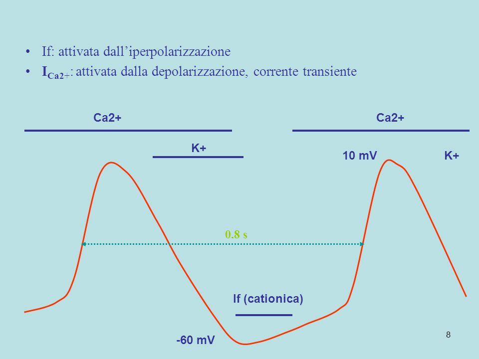If: attivata dall'iperpolarizzazione