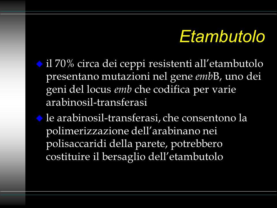 Etambutolo