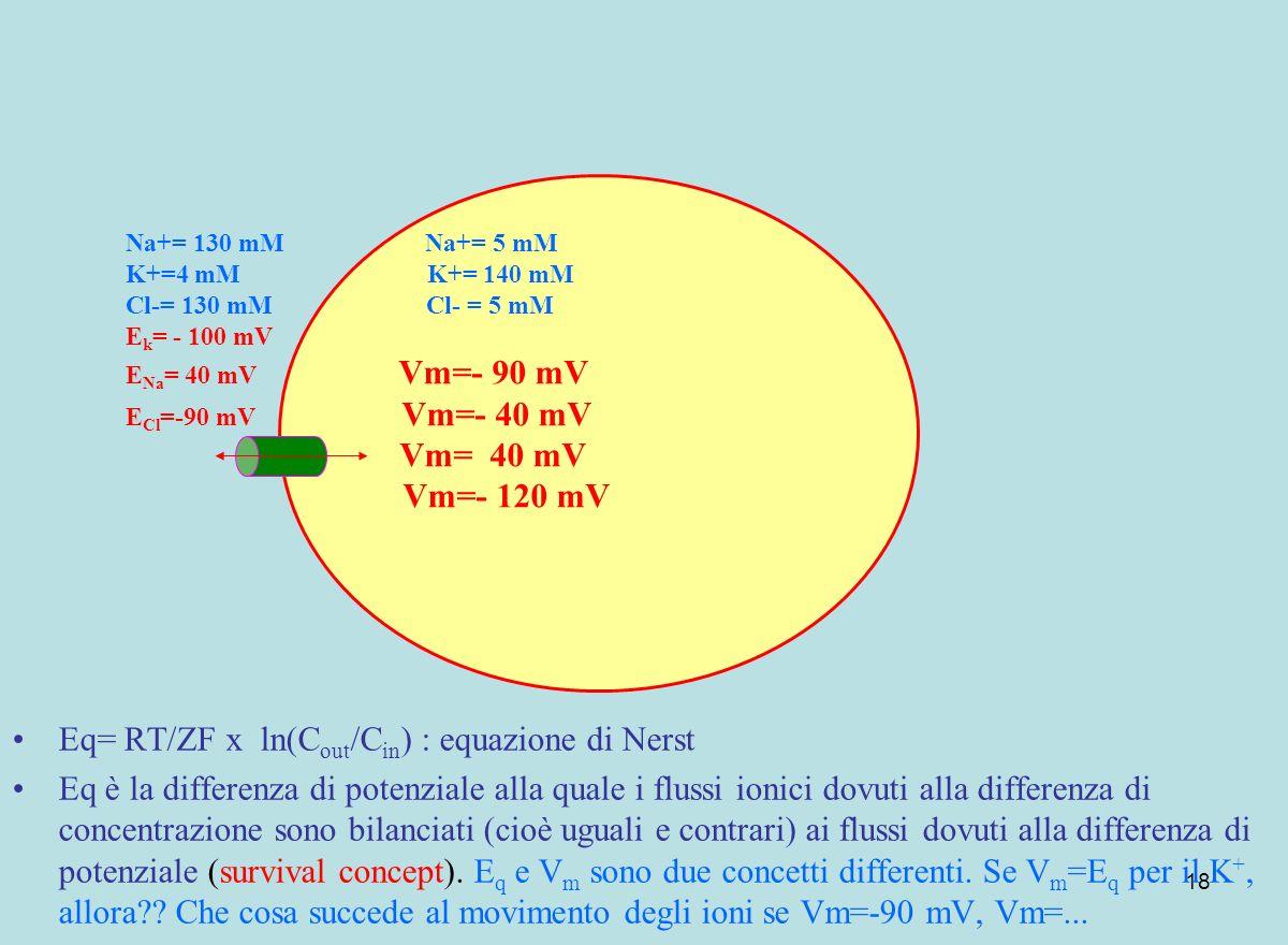 Eq= RT/ZF x ln(Cout/Cin) : equazione di Nerst