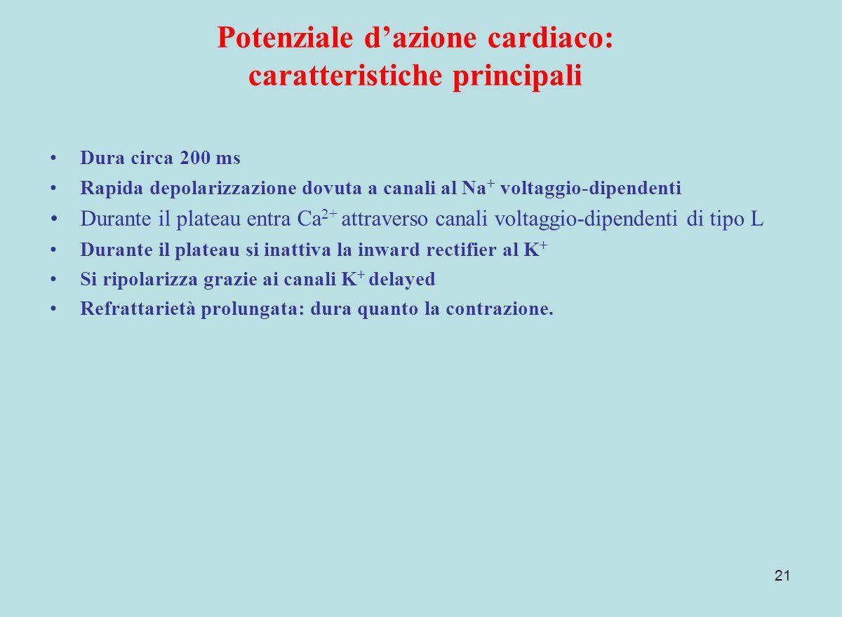 Potenziale d'azione cardiaco: caratteristiche principali