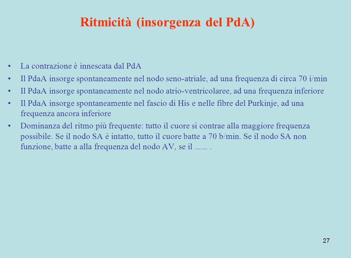 Ritmicità (insorgenza del PdA)
