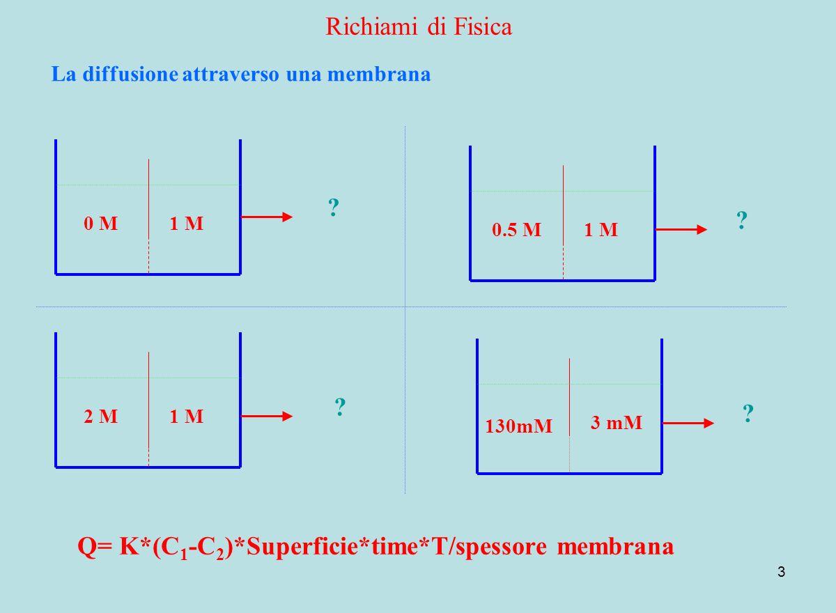 Q= K*(C1-C2)*Superficie*time*T/spessore membrana