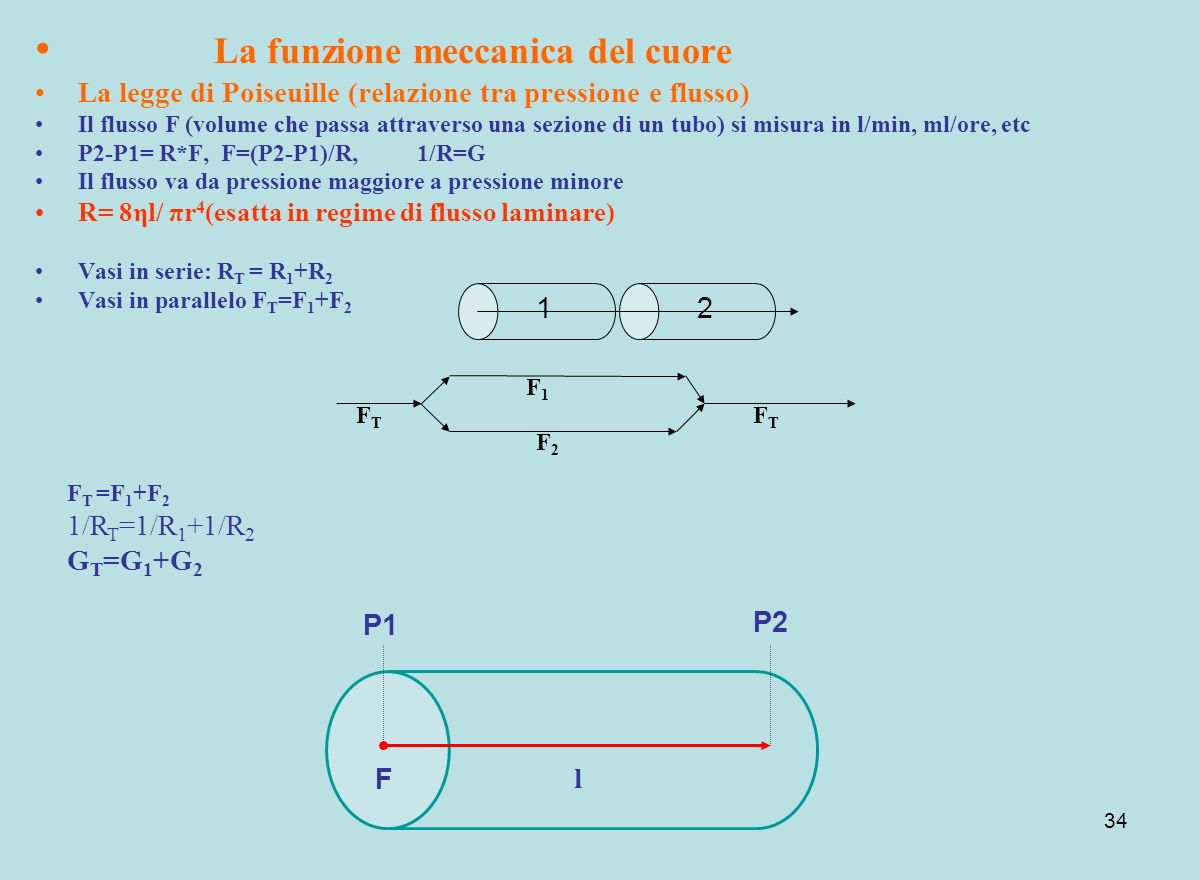 La funzione meccanica del cuore