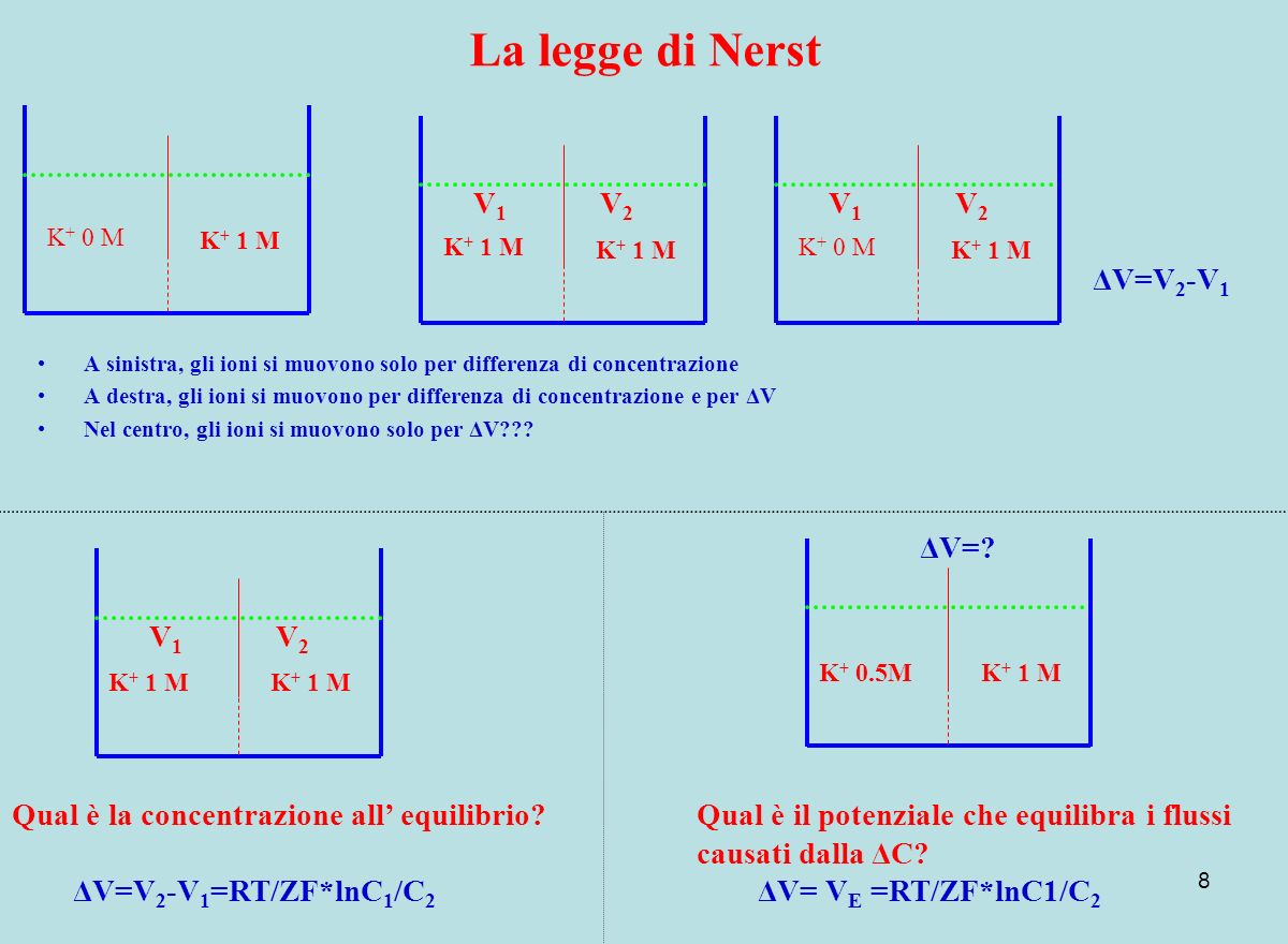 La legge di Nerst V1 V2 V1 V2 ΔV=V2-V1 ΔV= V1 V2