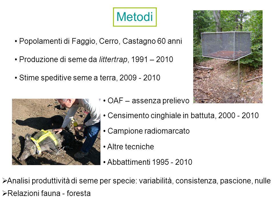 Metodi Popolamenti di Faggio, Cerro, Castagno 60 anni