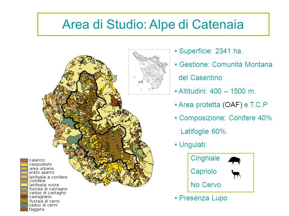 Area di Studio: Alpe di Catenaia
