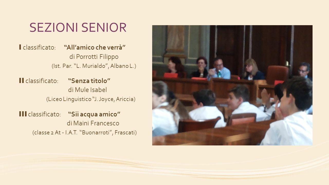 SEZIONI SENIOR I classificato: All'amico che verrà di Porrotti Filippo (Ist. Par. L. Murialdo , Albano L.)