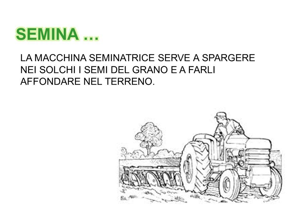 SEMINA … LA MACCHINA SEMINATRICE SERVE A SPARGERE NEI SOLCHI I SEMI DEL GRANO E A FARLI.