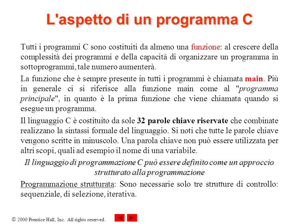 L aspetto di un programma C