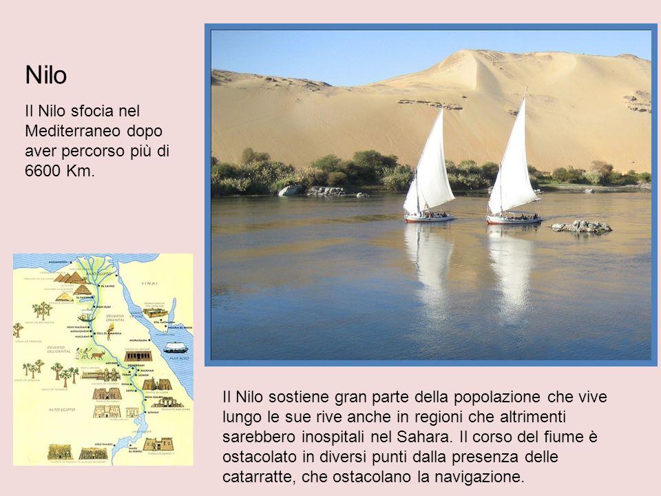 Nilo Il Nilo sfocia nel Mediterraneo dopo aver percorso più di 6600 Km.