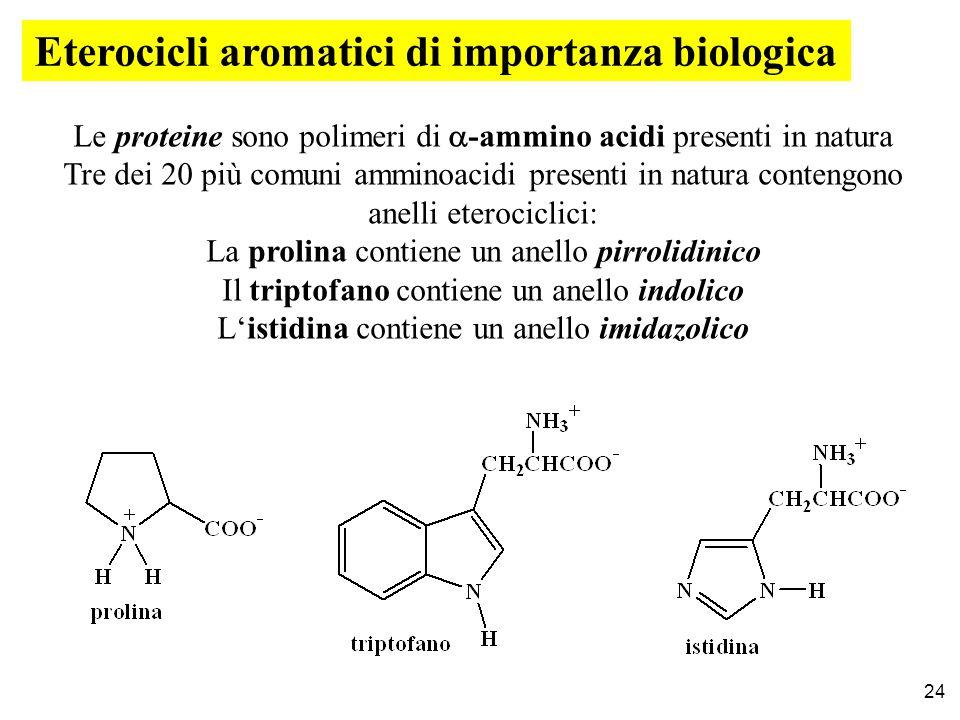 Eterocicli aromatici di importanza biologica