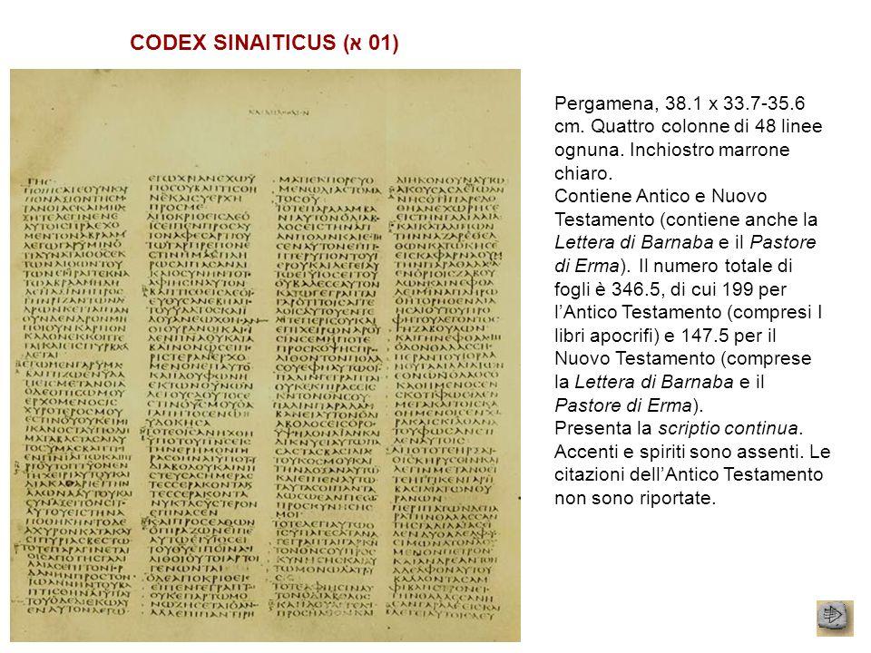 CODEX SINAITICUS (א 01) Pergamena, 38.1 x 33.7-35.6 cm. Quattro colonne di 48 linee ognuna. Inchiostro marrone chiaro.