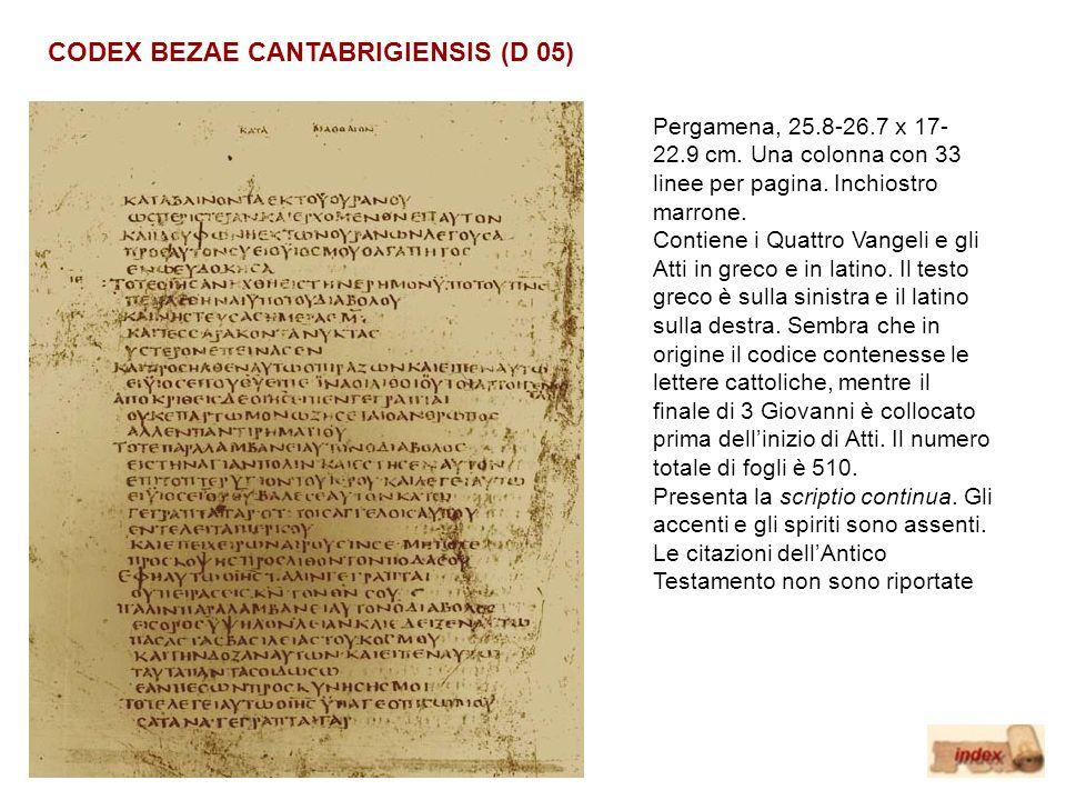 CODEX BEZAE CANTABRIGIENSIS (D 05)