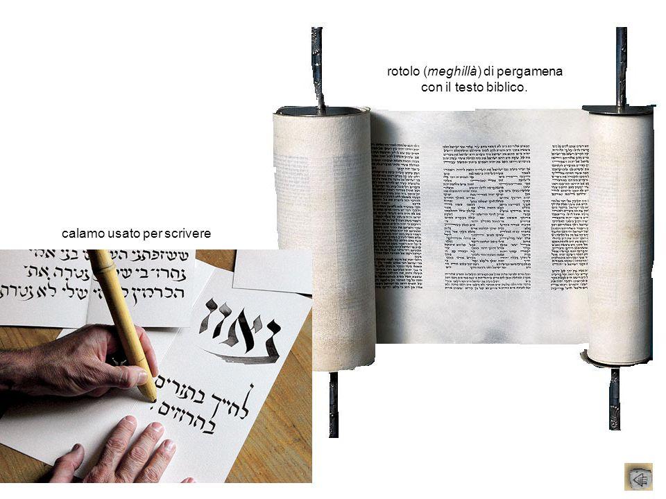 rotolo (meghillà) di pergamena con il testo biblico.