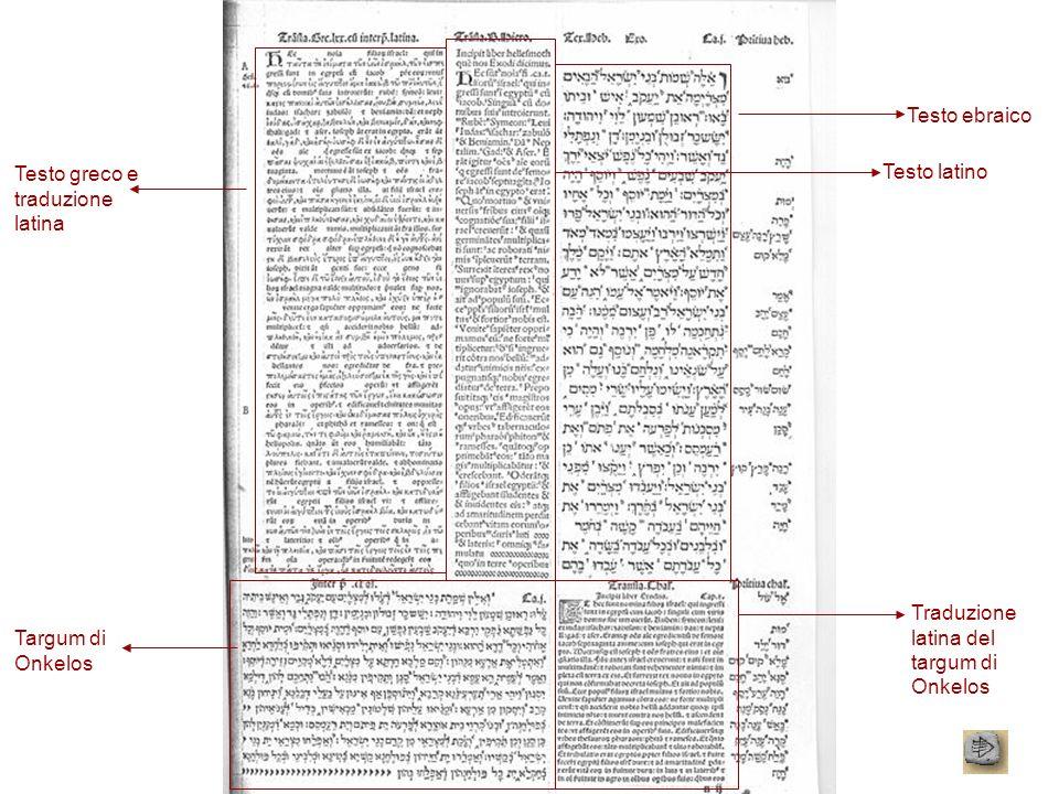 Testo ebraico Testo greco e traduzione latina. Testo latino. Traduzione latina del targum di Onkelos.