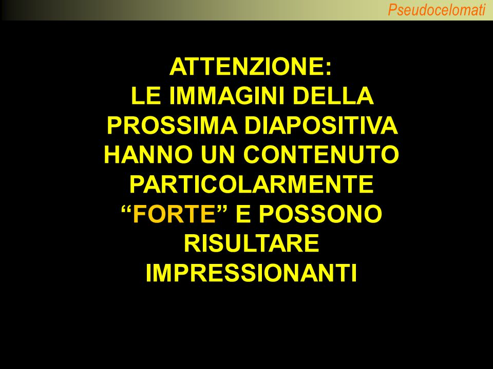 ATTENZIONE: LE IMMAGINI DELLA PROSSIMA DIAPOSITIVA HANNO UN CONTENUTO PARTICOLARMENTE FORTE E POSSONO RISULTARE IMPRESSIONANTI.