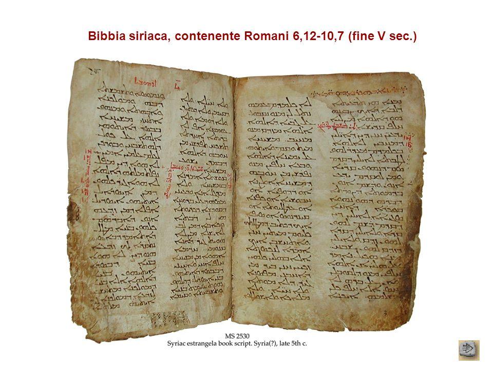 Bibbia siriaca, contenente Romani 6,12-10,7 (fine V sec.)