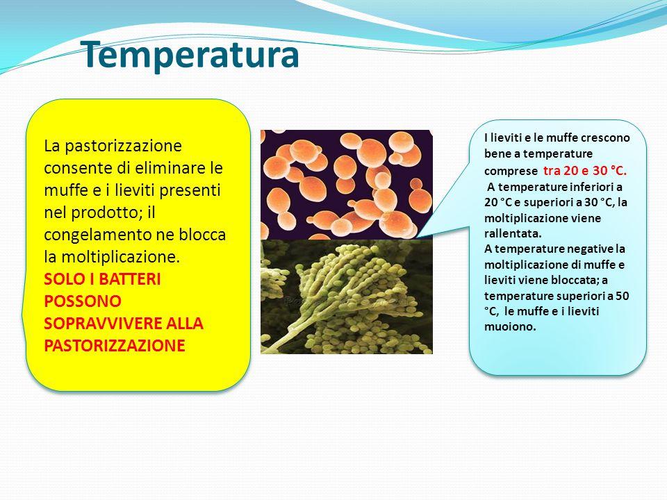Temperatura La pastorizzazione consente di eliminare le muffe e i lieviti presenti nel prodotto; il congelamento ne blocca la moltiplicazione.