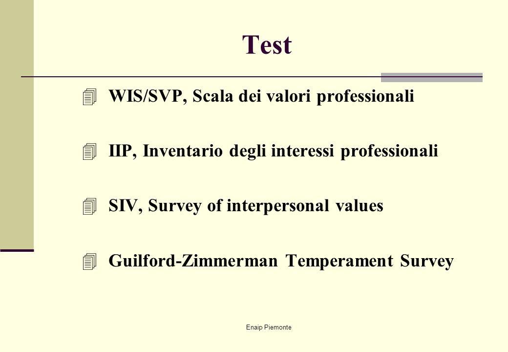 Test WIS/SVP, Scala dei valori professionali