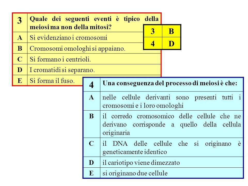 3 Quale dei seguenti eventi è tipico della meiosi ma non della mitosi A. Si evidenziano i cromosomi.