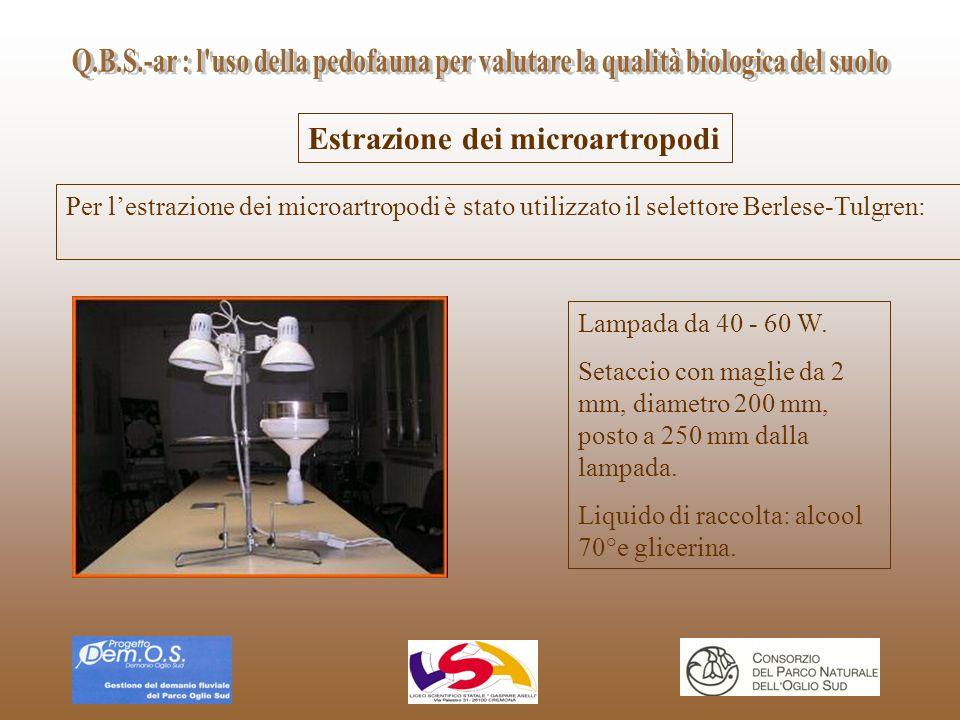Estrazione dei microartropodi