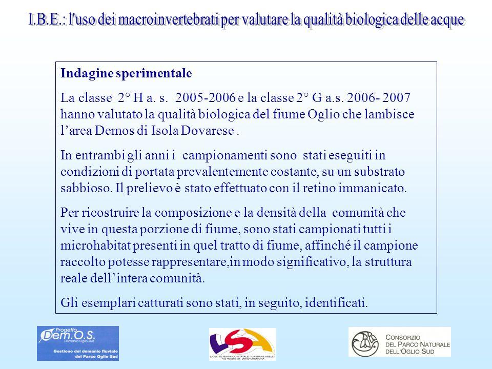 I.B.E.: l uso dei macroinvertebrati per valutare la qualità biologica delle acque