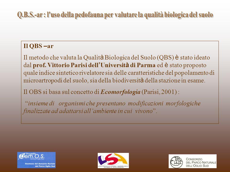 Q.B.S.-ar : l uso della pedofauna per valutare la qualità biologica del suolo