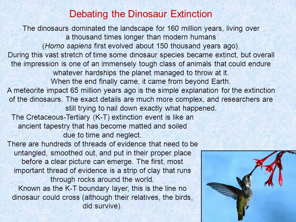 Debating the Dinosaur Extinction