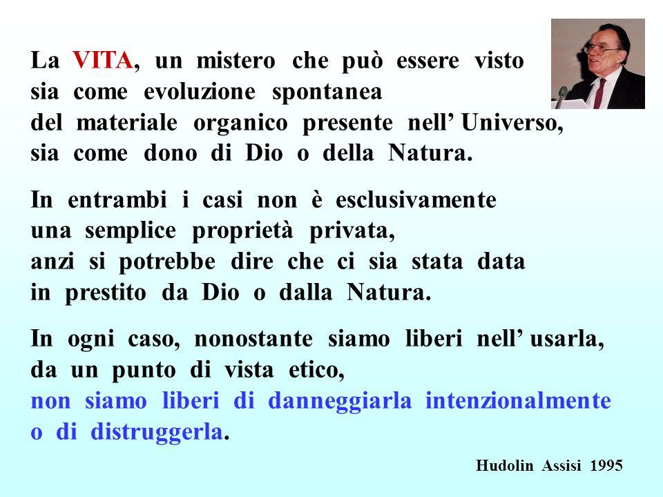 La VITA, un mistero che può essere visto sia come evoluzione spontanea del materiale organico presente nell' Universo, sia come dono di Dio o della Natura.