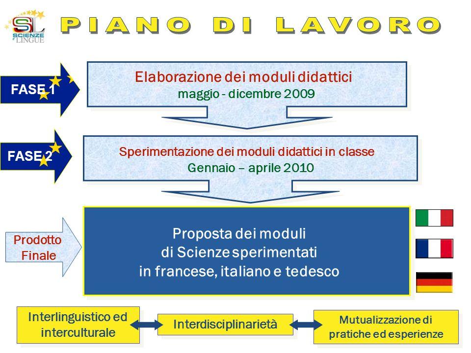 PIANO DI LAVORO Elaborazione dei moduli didattici Proposta dei moduli