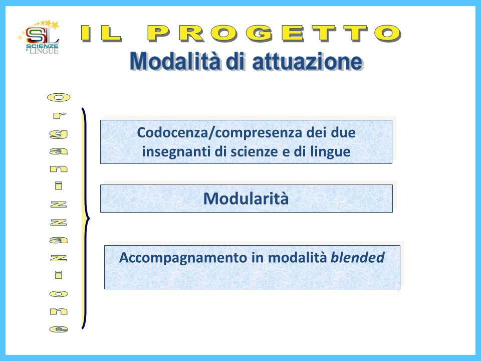 IL PROGETTO Organizzazione Modularità Modalità di attuazione