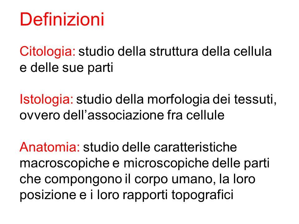 Definizioni Citologia: studio della struttura della cellula e delle sue parti. Istologia: studio della morfologia dei tessuti,