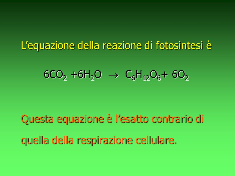 L'equazione della reazione di fotosintesi è