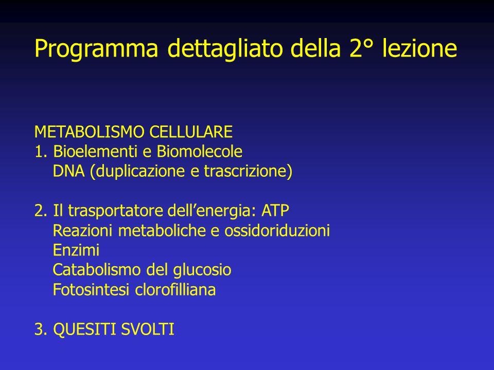 Programma dettagliato della 2° lezione